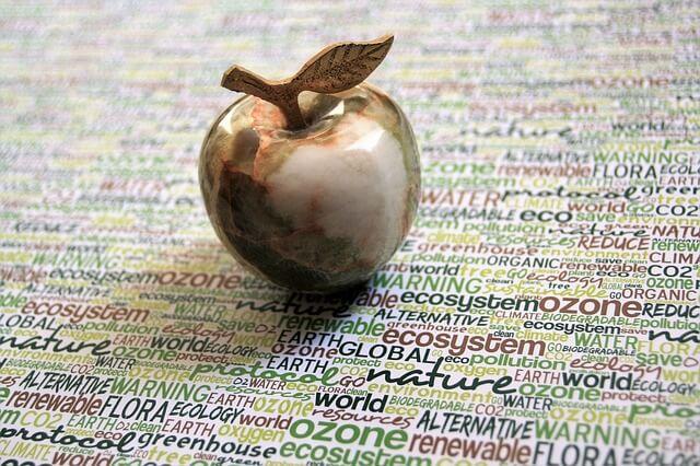 """Greenwashing – na czym polega zjawisko """"ekościemy""""?"""