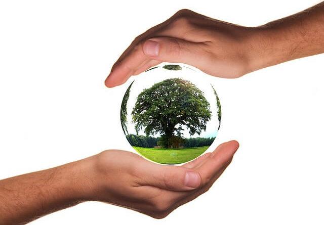 Greenwashing im Lichte des Gesetzes zur Bekämpfung des unlauteren Wettbewerbs